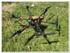 Logo Web Articulo Drones